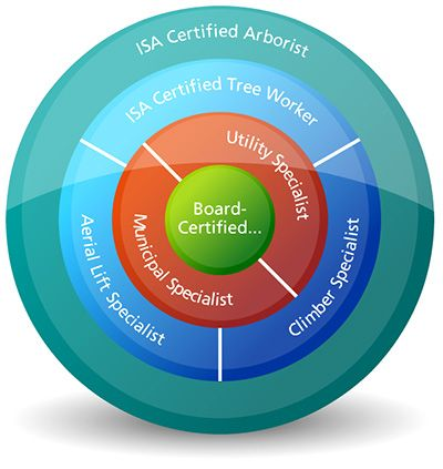 Certification Diagram